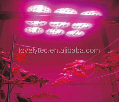 Factory Wholesale greenhouse led for sale, MINI one stop gardens greenhouse parts,high Quality low cost agriculture greenhouse