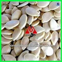 100% natural Pumpkin Seed Extract