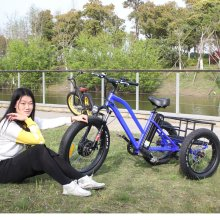Fat tire electric tricycle adults and electric trike with lithium battery