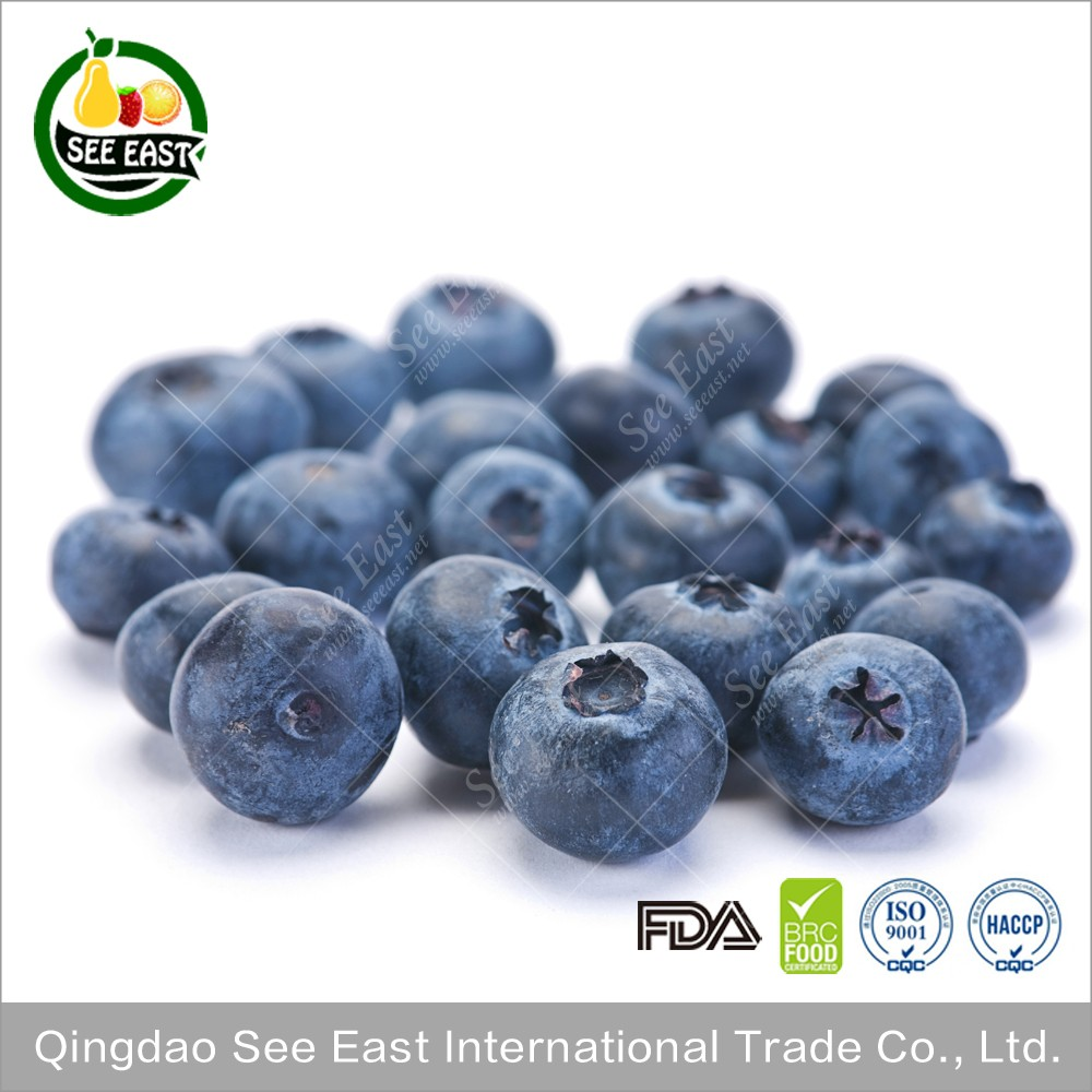Hot Sale Top Quality Best Price Frozen Blueberry Prices
