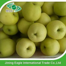 Chinese fruit protective paper bag fengshui pear with best price