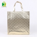 Best Selling High Quality Cheap Laminated Non woven trolley bag