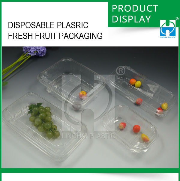 Hot Sale Transparent Disposable Plastic Fruit Packaging Box/ Food Storage Container