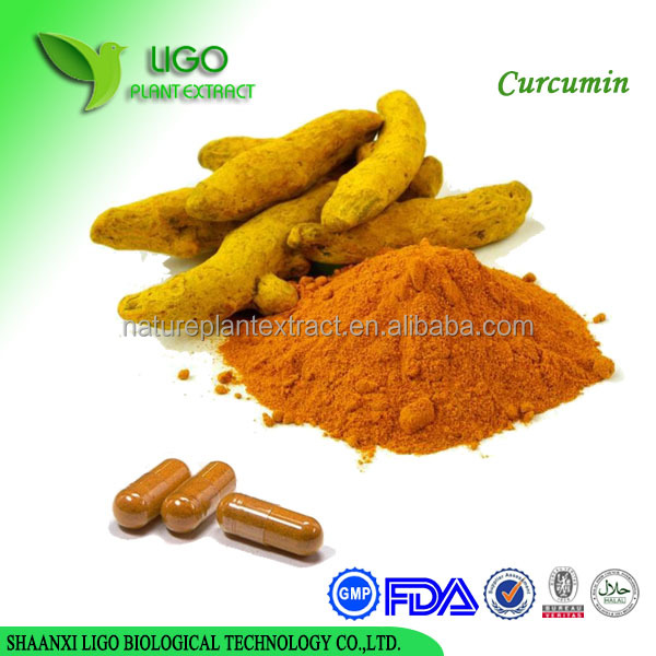 OEM private label bulk price organic pure nano turmeric curcumin extract 95% powder capsules