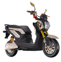 Chinese Mini Adult Electric Motorcycle