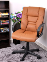 Tilting Office/Computer Chair with Arms Pneumatic Seat Height Adjustable Ergonomically Designed Easy Installation