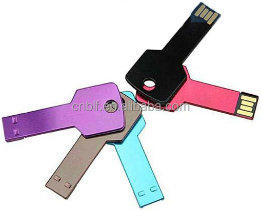 Popular promotional,custom,brand key usb flash drive 8GB with data ,printing logo service