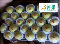 High Quality Wholesale Price Fresh Nature Green qinguan Apple