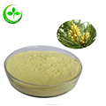 Supply organic pine pollen extract for making pine pollen tablet