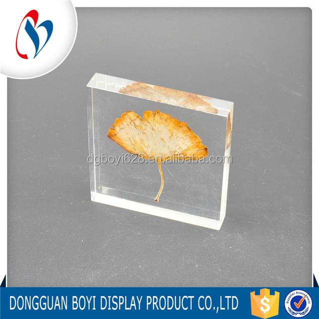 Specimen Leaf Insert Acrylic Crystal Display Plaque Craft