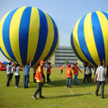 NB-AD3073 Special Big inflatable balloon for outdoor event