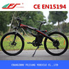 EAGLE electric bike wheel electric bike electric bike germany with CE EN15194