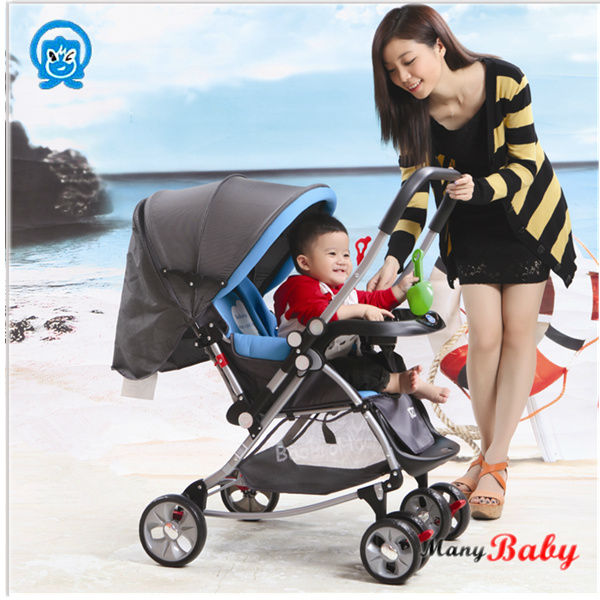pram/pushchair/travel system