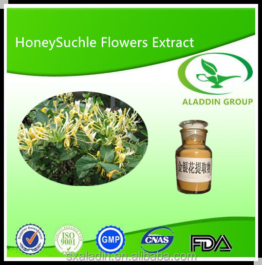 Gmp Factory High Quality Flos Lonicerae Japonicae Powder Extract