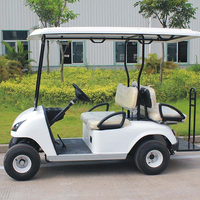 Best-selling 4 person electric golf cart DG-C2+2 with CE certificate (China)