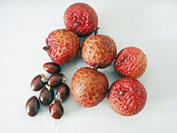 Japanese High Quality Litchi Seed Extract Raw Material Powder Made In Japan For Health Foods And Dietary Supplement