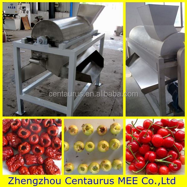 Low price mini cherry pitting machine with fast delivery