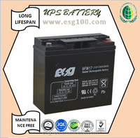 VRLA Battery 12V 17AH High Performance Mini Home UPS Usage