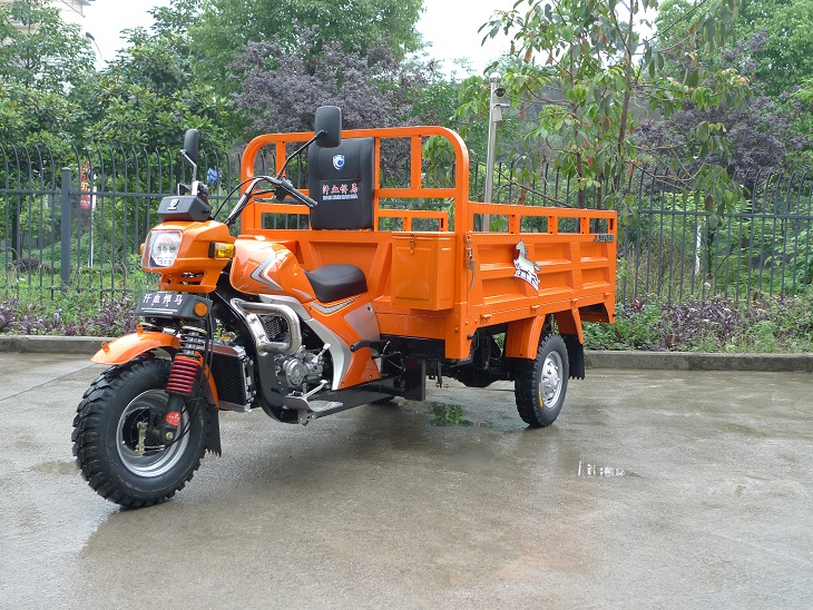 China Specilized Supplier Of Cargo Three Wheel Motorcycle For South-America And Africa