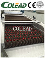Palm dates brush washing machine brush washer cleaning machine from Colead