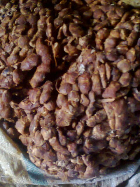Tamarind from Indonesia, good price and quality