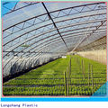 3 Layers Co-extrusion Long-life Greenhouse Film