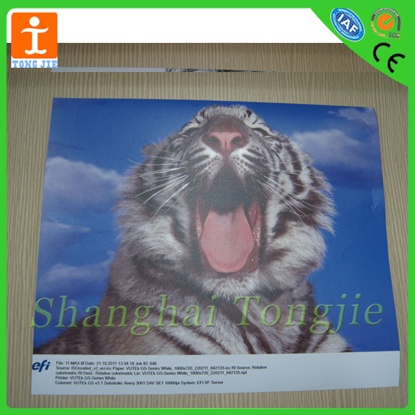 Custom Tiger Cartoon Pictures printing Window Cling