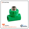 China supplier plastic PPR pipe fittings male/female