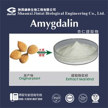 Factory supply high purity 98% Bitter Apricot Seed P.E. Amygdalin