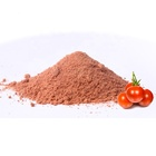 Hot sale tomato powder ketchup essence powder for potato chips