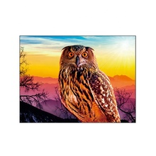 In stock animal designs 3D lenticular picture 30x40cm for promotion <strong>gifts</strong>