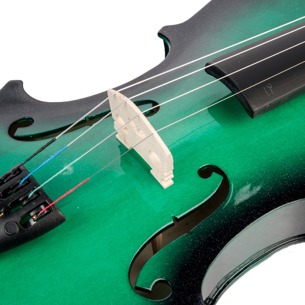 NAOMI 4/4 Gradient Green&amp;Black Acoustic Violin Spruce Top &amp; Ebony Fitting Basswood Violin <strong>W</strong>/Violin Case+Rosin+Bow