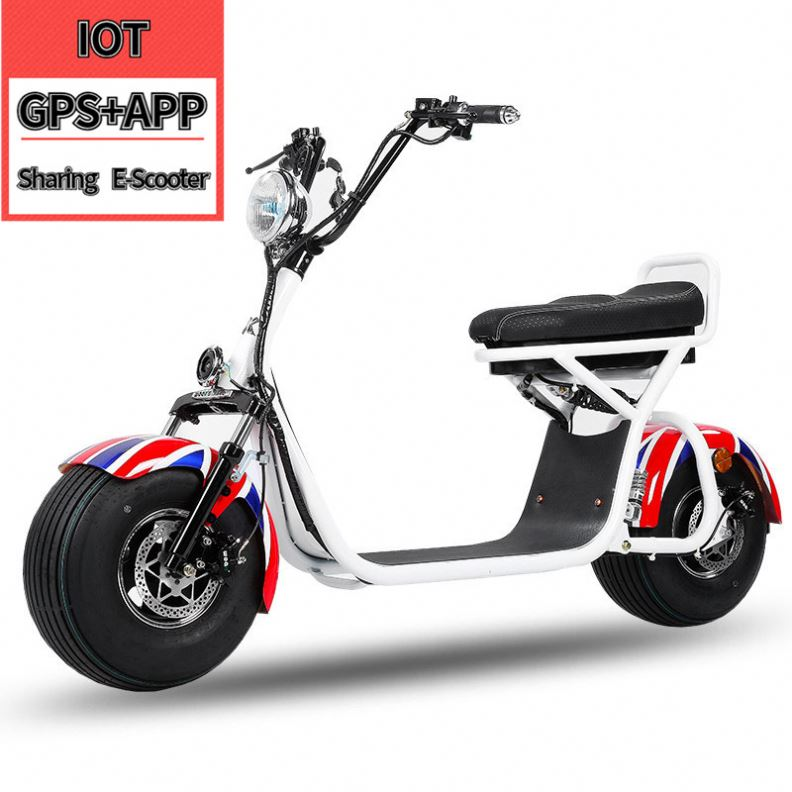1500W Long Range Sharing Alloy <strong>Bajaj</strong> 2 Seat Cheap Adults Off Road Wide Wheel Motorino Two Wheels Electric Scooter