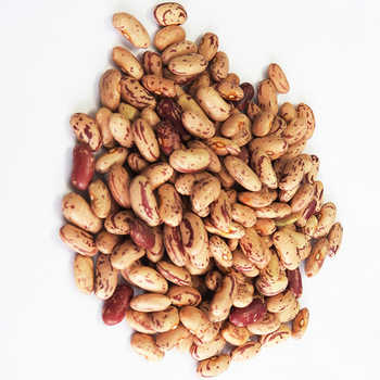 Dried Pinto Bean Best Price Light Speckled Kidney Beans
