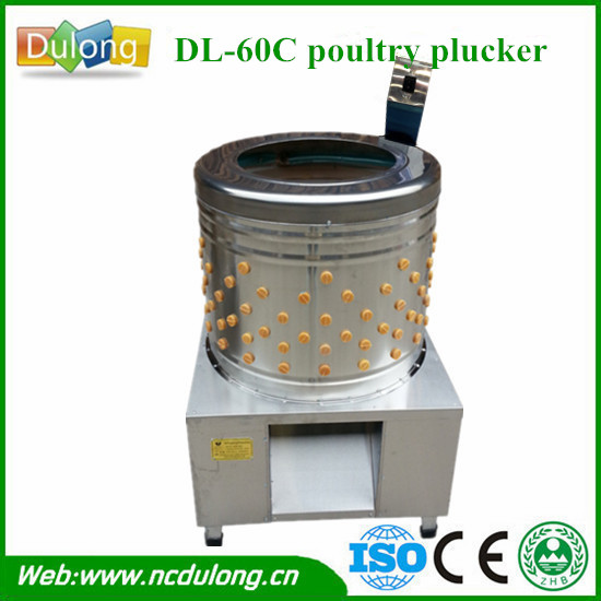 New condition poultry machine chicken plucker south africa with best quality