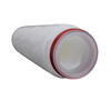 Replacement of high flow PES 0.22um membrane filter cartridge