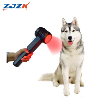 lllt laser therapy Electrical Physical Therapeutic Laser For Dogs Forehead Pain Relief
