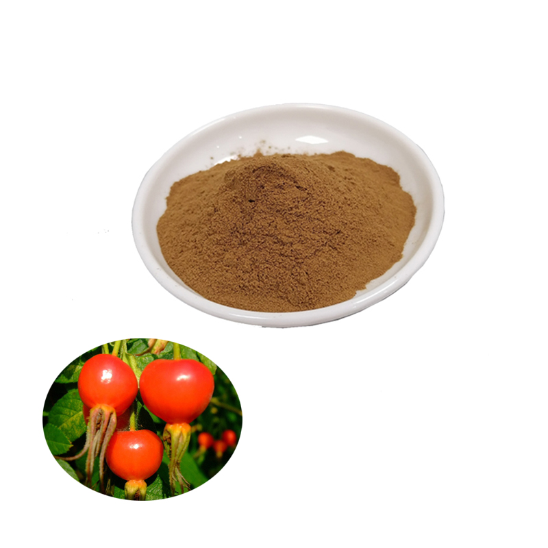 High Quality <strong>Natural</strong> Rose Hip Extract Powder 10:1