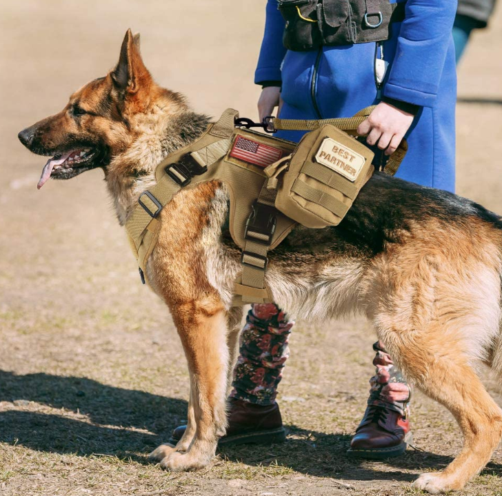 Tactical Dog Harness Molle Vest for Service & Training Military Dogs