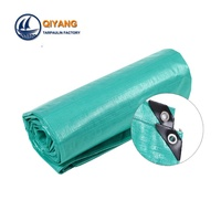 Factory Tent and Awning Fabric Plastic Eyelets Tarpaulin in Rolls