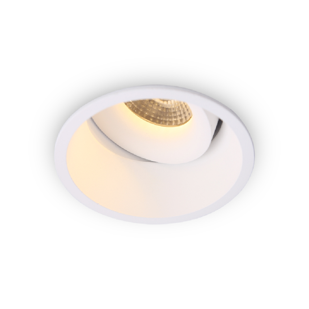 Dongguan Alpha Lighting Popular 10W Ip54 Waterproof Outdoor Adjustable Led <strong>Downlight</strong>