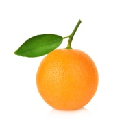 VALENCIA ORANGE FOR ORANGE JUICE