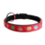Fashion logo name brand padded dog collars and leashes stock wholesale