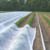 agricultural non woven blueberry weed control mat ground cover