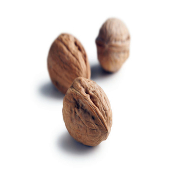 Organic Certified Walnut Kernels high quality