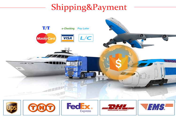 Shipping&Payment