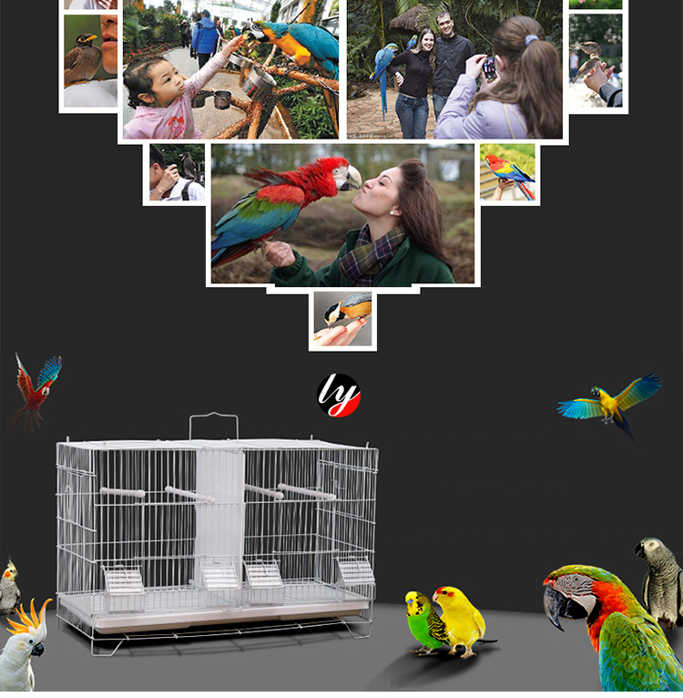 Wholesale Small High Quality  Wire Mesh Parrots Breeding Bird Cage Pet Bird Cage