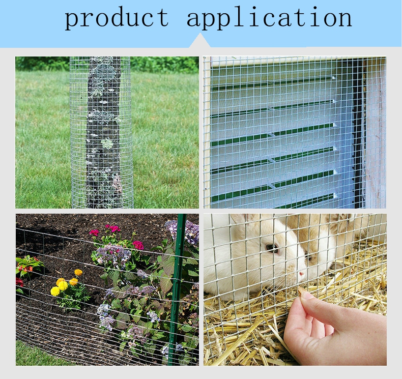 Eco-Friendly Feature and Birds Application iron mesh