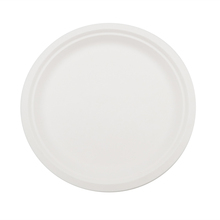 7 Inch Disposable Sugarcane Bagasse <strong>Plate</strong>