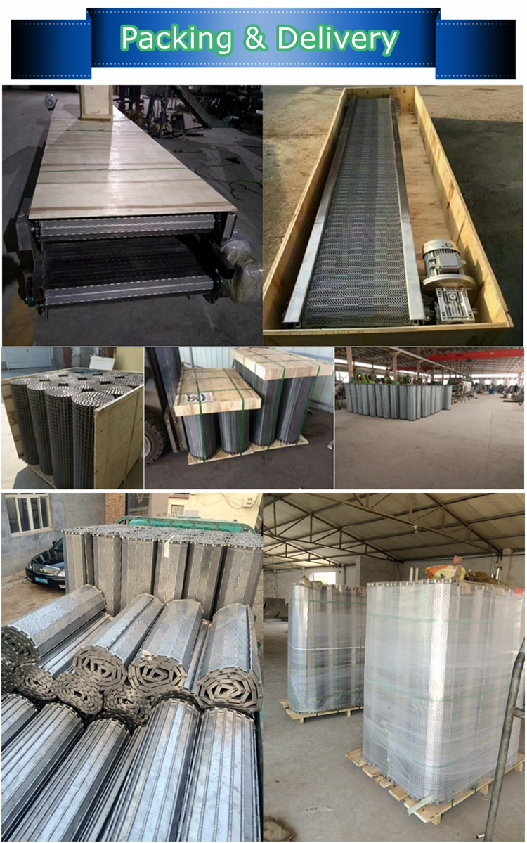 professional slat /chain plate conveyor manufacturer for stone